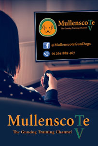 Mullesncote TV